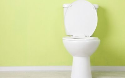 How Long Should a Toilet Last and When Is It Time to Replace Yours?