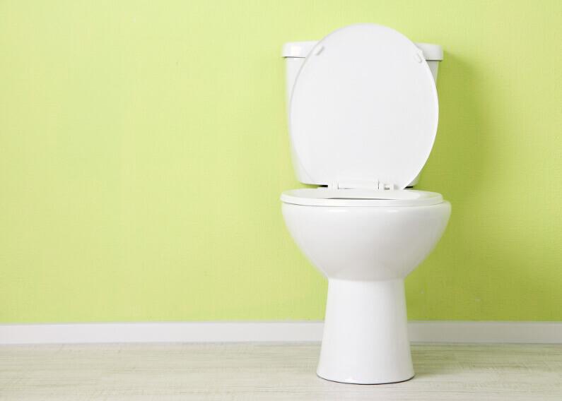 How Long Should a Toilet Last